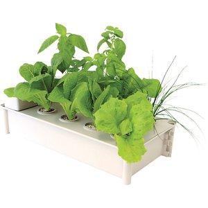 Hydrofarm Salad Box Hydroponic Salad Garden Kit