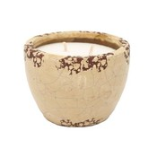 Pest and Disease Murphy's Naturals Ceramic Mosquito Repellent Garden Candle - Ivory