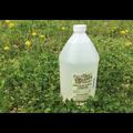Fifth Season Gardening Co Fifth Season Horticultural Vinegar Herbicide (20%) - 1 gallon