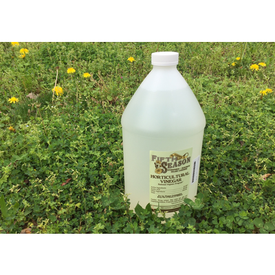 Fifth Season Gardening Co Fifth Season Horticultural Vinegar Herbicide (20%) - 1 gallon