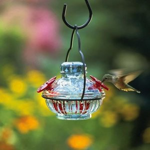 Home and Garden Parasol Pot de Creme Hummingbird Feeder - Green