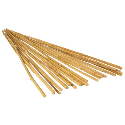 Outdoor Gardening Bamboo Stakes-4';25 per pack