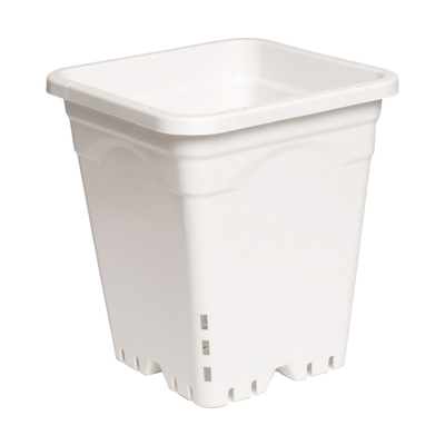 "Indoor Gardening White Square Pot - 9"" x 9"" x 10"""