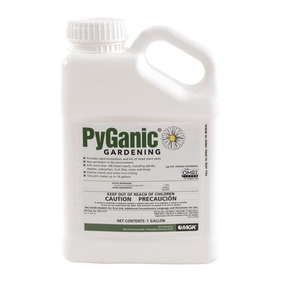 Outdoor Gardening Pyganic Organic Pesticide Concentrate (1.4%)- 1 gallon