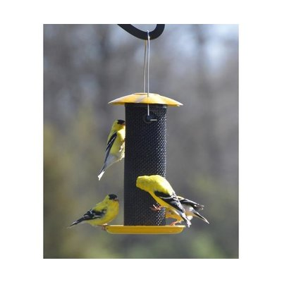 Songbird Essentials Petite Yellow Thistle (Nyjer) Feeder