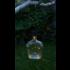 Echo Valley Afterglow Solar Bottle Lantern Kit