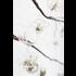 Accent Decor Hanging Glass Terrarium w/ Hooks