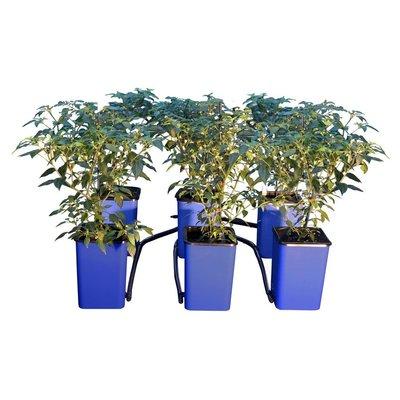 Indoor Gardening Titan Controls Flo-n-Gro Expansion Kit - 6-Site
