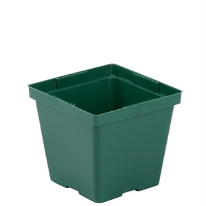 Outdoor Gardening Kord Square Black Pot - 4""