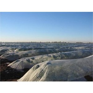 Agribon Agribon AG-50 1.5oz Frost Cover - 14 ft x 14 ft - 2/pack