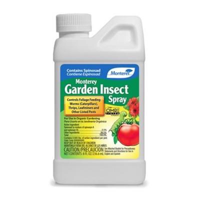 Monterey Monterey Organic Garden Insect Spray - Concentrate - 8 oz