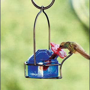 Home and Garden Parasol Lunch Pail Hummingbird Feeder - Assorted