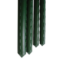 Outdoor Gardening Green VInyl Steel Stake - 3 ft