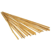Outdoor Gardening Bamboo Stakes - 20 pack - 2ft