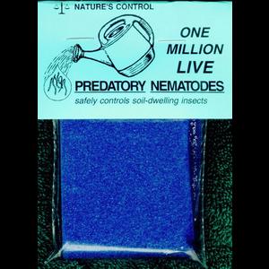 "Nature's Control Nature's Control ""Double Death Duo"" Predatory Nematode Sponge"