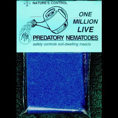 "Pest and Disease Nature's Control ""Double Death Duo"" Predatory Nematode Sponge"