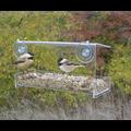 Heath Clear View Window Bird Feeder