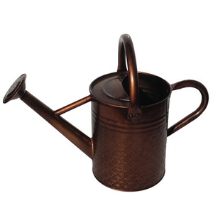 Outdoor Gardening Gardener Select 4 Liter Watering Can - Copper