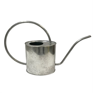 Outdoor Gardening Gardener Select 2L Oval Watering Can  - Galvanized
