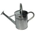 Outdoor Gardening Gardener Select 3.5 Liter Watering Can - Galvanized