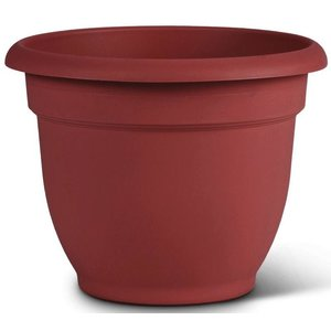 Pottery Bloem Burnt Red Ariana Planter - 10 in