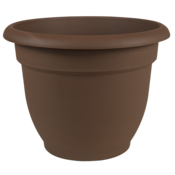 Pottery Bloem Chocolate Ariana Planter - 10 in