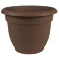 Bloem Bloem Chocolate Ariana Planter - 6 in