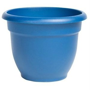 Pottery Bloem Deep Sea Ariana Planter - 6 in