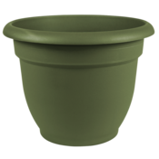 Pottery Bloem Living Green Ariana Planter - 6 in