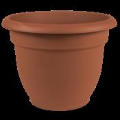 Pottery Bloem Ariana Terra Cotta Planter- 10 in