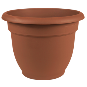 Pottery Bloem Ariana Terra Cotta Planter- 10 in