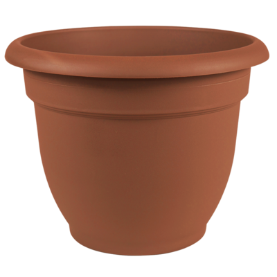 Pottery Bloem Ariana Terra Cotta Planter- 8 in