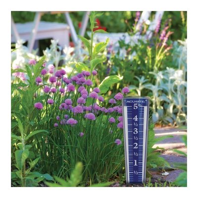 Home and Garden AcuRite Easy-Read Magnifying Rain Gauge