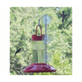 Songbird Essentials Dr. JBs Hummingbird Feeder with Window Hanger