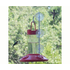 Songbird Essentials Dr. JBs Hummingbird Feeder with Window Hanger