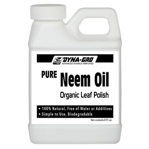 Pest and Disease Dyna-Gro Neem Oil