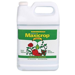 Maxicrop Maxicrop Seaweed 0.1-0-1