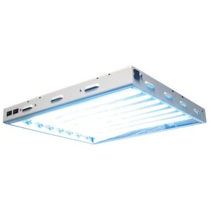 Lighting Sun Blaze 28 HO T5 Fluorescent Fixture -  8 Lamp - 2 Foot - 120 Volt
