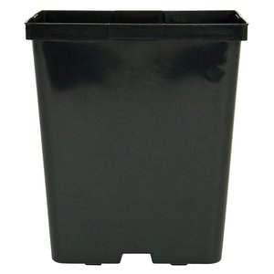 Outdoor Gardening Kord Square Black Pot - 5.5""
