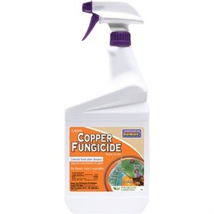 Pest and Disease Bonide Copper Fungicide Ready-to-Use