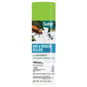 Pest and Disease Safer Ant & Roach Killer Aerosol