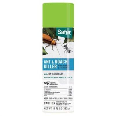 Pest and Disease Safer Ant & Roach Killer Aerosol