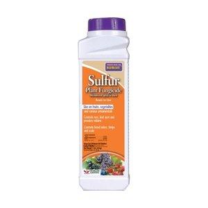 Pest and Disease Bonide Sulfur Dust - 1 lb
