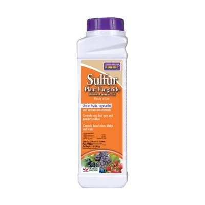 Pest and Disease Bonide Sulfur Dust - 1 lb