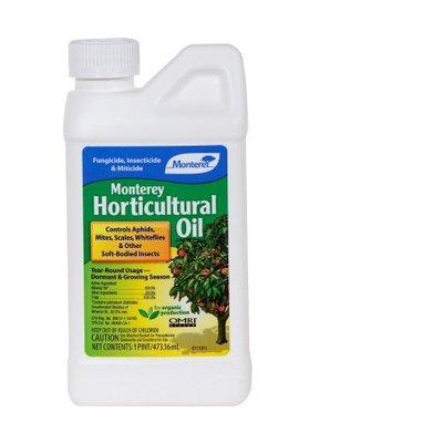 Monterey Monterey Horticultural Oil Concentrate - 16 oz