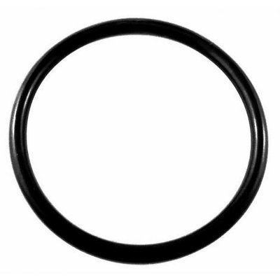 Beer and Wine Keg Lid O-Ring