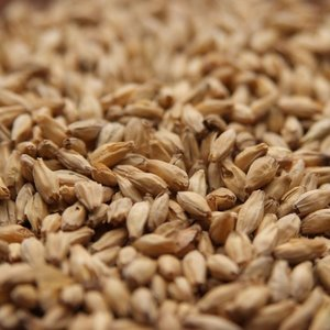 FrancoBelges Simpsons Aromatic Malt - Bulk