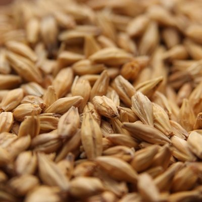 Beer and Wine Best Malz Acidulated Malt