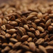 Beer and Wine Brown Malt-Bulk