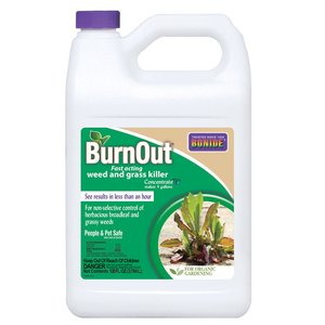 Bonide Bonie Burnout Weed & Grass Killer Concentrate - 1 gallon
